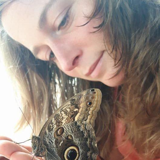 vlinder rinske